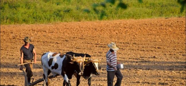 κουβα-αγροτες-σωστο-1-864x400_c